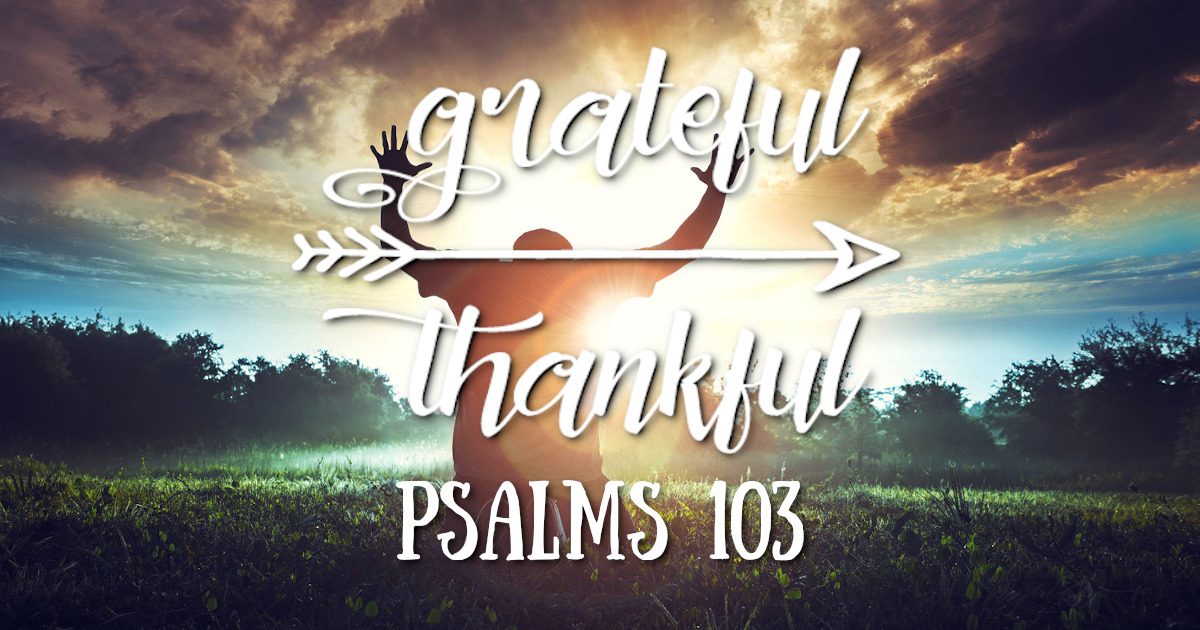 5 Reasons to Give Thanks